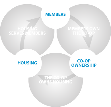 Housing co-operative shared owenrship principal diagram.